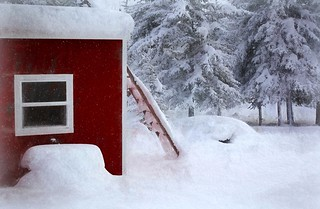 Enough Snow! (Explored)