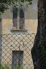 tree, fence and an old house (Hayashina) Tags: monteisola italy tree fence window hff