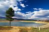 Край язовир Дренов дол (sevdelinkata) Tags: landscape sky water tree bulgaria