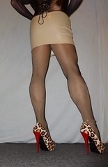 DSC02383 (Mandy Buffalo) Tags: buffalo leo stilettos stiletto skirt highheels heels high heel higheels corsage mini