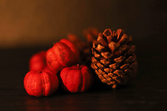 Decorative ornaments by the candlelight (Through Serena's Lens) Tags: hmm macromondays litbycandlelight driedputkapodminipumpkins pinecone decorative ornaments candlelight dof tabletop stilllife canoneos6dmarkii 7dwf