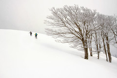 Okolin (arbioi) Tags: baztan belate canon euskalherria eos40d frio paisaje montaña montañas navarra nafarroa naturaleza nieve snow saioa okolin lantz ultzama raquetas