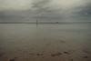 Graustufen_002 (liebeslakritze) Tags: christmasstroll stormy calm storm gray shadesofgray colorline dangerzone gefahrenstelle beach ostsee balticsea grau