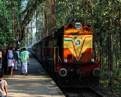 Perfect match!! (Gautham Karthik) Tags: indianrailways wdg3a diesellocomotive ernakulamlocoshed cherukara trainspotting trainspotter railfanning morning beautiful banyantree