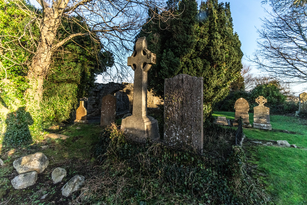ANCIENT CHURCH AND GRAVEYARD AT TULLY [LAUGHANSTOWN LANE NEAR THE LUAS TRAM STOP]-134595