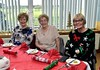 "SPFL Trust Festive Friends • <a style=""font-size:0.8em;"" href=""http://www.flickr.com/photos/152414295@N05/38489982864/"" target=""_blank"">View on Flickr</a>"