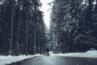 Exploring Germany's black forest.