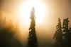 _JAS2159 (Jason Hummel Photography) Tags: whitepassskiarea washingtion skiresort whitepass sunset skiing