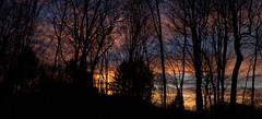 Dawn on Christmas Eve (vbd) Tags: pentax k3 vbd hdpentaxda35mmf28macrolimited ct trumbull sunrise connecticut dawn newengland landscape vista handheld manualfocus trees