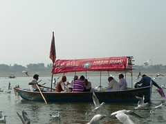 Allahabad, Triveni Sangam 24 - Adarsh Credit Cooperative Society (juggadery) Tags: 2015 india uttarpradesh people water religion hindu animal bird boattrip devanagari देवनागरी