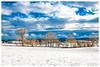 Décembre dans le Jura (Pascale_seg) Tags: jura maiche france hiver winter snow neige paysage landscape tree arbre sky bleu blue nuage cloud