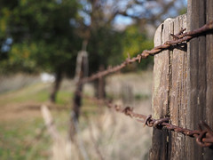 Fences (Eastbaygirl925) Tags: fence outdoors nature barbedwire fenceline fencepost