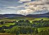 In The Meadow_IMG_8863 (ronniefleming@btinternet.com) Tags: perthshire buchanty visitscotland walkhighlands sheep glenalmondscotland