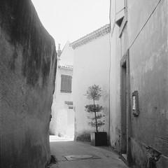 Walls (davidgarciadorado) Tags: sorezes france village blackandwhite film trix kodak rolleiflex planar shadow plant door ithinkthisisart