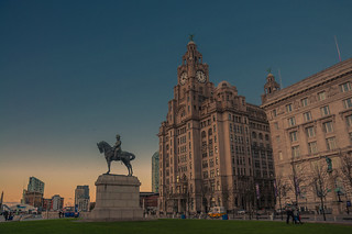 Liverbirds at the end of the day