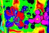 _DSC0265_DR_v1 (Pascal Rey Photographies) Tags: flowerpower flower fleurs popart pop surrealiste dada dadaisme psychédélique psychedelic acidtest acidulée acidulées nikon d700 luminar digikam digikamusers pascalreyphotographies photographiecontemporaine photos photographie photography photograffik saturations