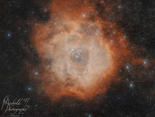 Rosette Nebula (C49)