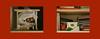 2. Variation Roter Rahmen (hedbavny) Tags: ever clever käse cheese walnus nut nus walnut mailart card karte danke apfel apple red rot orange yellow gelb schrift handschrift green grün tinte ink sackerl nylonsackerl plastiktüte weis white drawer lade shelf fach kasterl kasten buch book heft mappe umschlag textbuch schnellhefter kladde stos stapel flasche thermosflasche postkarte postcard brief letter buchstabe arbeit work dienstzimmer backstage lampe taschenlampe leselicht theater theatre kollege colleague überraschung surprise geschenk present gift wien vienna austria österreich hedbavny ingridhedbavny