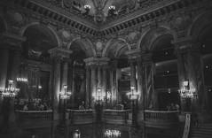 Paris: Palais Garnier (McFarlaneImaging) Tags: 11 2015 35mm 400 alceste analog bw blackandwhite canon europe eurotrip fd ftb film france fromage gluck grandstaircase homedeveloping iso1600 kodak mci operahouse palaisgarnier paris pushprocess slr theatre travel trix vacation xtol mcfarlaneimagingcom îledefrance fr
