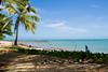 Praia do Forte | Bahia | Brasil (Leandro Rinco) Tags: brazil brasil praiadoforte bahia beach praia mar ocean sol tartaruga projetotamar sun