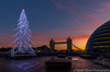 'Twas the Monday before Christmas... (sarahOphoto) Tags: bridge christmas clouds england illuminated kingdom led light london low more sky sunrise tree uk united unitedkingdom gb landscape river thames colour long exposure city hall