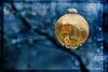 Rainy Christmas - Weihnachtskugeln im Regen (macplatti) Tags: xt2 xf55200mmf3548rlmois koblach vorarlberg austria rain rainyweather regenwetter weihnachten weihnachtenimregen christmastreeball christbaumkugeln blue blau gold balls goldenrain goldregen