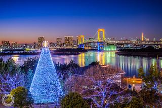 Merry Christmas from Tokyo Odaiba