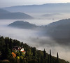 Just one spotlight (Robyn Hooz) Tags: monti berici fimon case houses nebbia fog colline hills layer landscape paesaggio vicenza