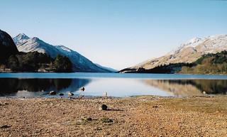 Loch Shiel from Glenfinnan - February 2001