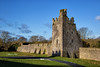 Kells Priory Ruins (Canon Queen Rocks (1,870,000 + views)) Tags: ruins ancient structure priory kells co kilkenny ireland irish walls monastery monasticsite tower grass sky tree medieval augustine building stonework landscape