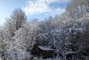 Winter (IV) (dididumm) Tags: view shed wood wooden tree trees sky clouds blue sunshine winter snow cold garden garten kalt kälte schnee sonnenschein blau wolken himmel bäume baum hölzern holz ausholz verschlag hütte schuppen blick aussicht