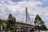 Sydney Metro - Skytrain - 3 (john cowper) Tags: sydneymetro skytrain bridge cablestayed windsorroad rousehilldrive rousehill transportfornsw nswgovernment northwestraillink northwest sydney newsouthwales