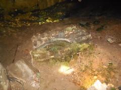 DSCN0670 (brian.sableman) Tags: gua tempurung kl