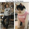 Two can play this game (FunnyFiasco) Tags: animals cat meme hilarious humor