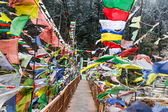 Let's spread some love!! (abhishek.verma55) Tags: prayer flags prayerflags india tibetanculture indianculture sikkim northsikkim yumthangvalley bridge river colourful colour colors colorful valley rivervalley red green blue white yellow wind windy footbridge yumthang hotspring travel ©abhishekverma travelphotography travelphotos travelphoto lachung beautiful culture exploreindia explosionofcolors explosionofcolours incredibleindia indiatravel trees snow cold winter canon550d tamron2470 tamron canon outdoor outdoors himalaya himalayas mountain mountainside hills hillside hill foothill