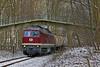 LEG 132 109 I Kiel-Wik (Bahn Sascha) Tags: eisenbahn leg br232