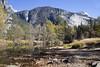 Yosemite Valley (Robert Horne Wildlife Photography) Tags: yosemite yosemitenationalpark nationalpark california yosemitevalley valley scenery scenic