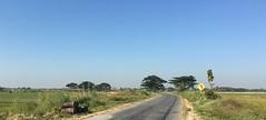 Myanmar, Ayeyarwady Region, Maubin District, Danubyu Township, Pyin Ka Thar Village Tract (Die Welt, wie ich sie vorfand) Tags: myanmar burma bicycle cycling ayeyarwadyregion ayeyarwady irrawaddy delta irrawaddydelta maubindistrict maubin danubyutownship danubyu pyinkathar roadsign