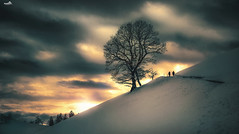 The dark days of winter (VandenBerge Photography) Tags: heiligenschwendi berneseoberland cantonberne winter snow snowscape mountains trees skyscape sky canon eos80d road depth clouds europe switzerland season people lonelyplanet landscape grouptripod