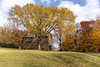 Tobacco Barn (Tim Lumley) Tags: natcheztraceparkway tn tennessee structuresarchitecture autumn autumncolor barn cloud countryside fall fallcolor farm field historic historicbuilding yellow unitedstates