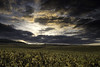 Last light (ZeGaby) Tags: champagne clouds exposureblending landscapes naturephotography paysages pentax35mm pentaxk1 pixelshift sky sunset vineyards chouilly grandest france fr