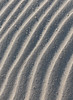 Ripples in the Dunes (philipbouchard) Tags: sand dune ripples patterns ridges sinuous abstract windblown backbay nationalwildliferefuge virginiabeach virginia