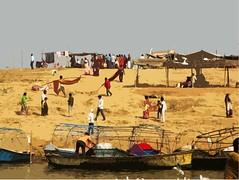 Allahabad, Triveni Sangam 28b (juggadery) Tags: 2015 india uttarpradesh religion hindu water people boattrip