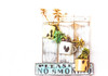 No Smoking! (Daniela 59) Tags: 7dwf fridaythemeflora plant succulent mug enamel chipped sign board nosmoking danielaruppel