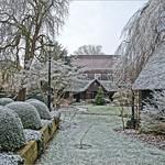 Winter Garden thumbnail