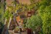 ROUSSILLON - Weinstock (moni-h) Tags: herbst louberon oktober2017 olympusm14150mm14056ii olympusomdem5markii paca provence vaucluse roussillon weinstock