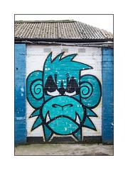Street Art (Mighty Monkey), North London, England. (Joseph O'Malley64) Tags: mightymo mightymonkey atg bc burningcandy burningcandycrew graffiti urbanart publicart freeart streetart streetartist northlondon london england uk britain british greatbritain art artist artistry artwork mural muralist wallmural wall walls brickwork bricksmortar cement pointing airbricks vents corrugatedsteelroofingpanels guttering plasticguttering pipes piping insulation concrete algae urban urbanlandscape aerosol cans spray paint fujix x100t accuracyprecision