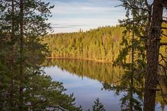 Hynkänlampi (Markus Heinonen Photography) Tags: hynkänlampi hynkeberget järvi lake metsä forest nuuksio noux espoo suomi finland maisema landscape waterscape luonto nature
