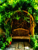 Shaded Seating (Steve Taylor (Photography)) Tags: creeper pot climber pergola art digital bench garden seat geffryemuseum brown green red brick wooden tile stone uk gb england greatbritain unitedkingdom london hedge flora plant sunny