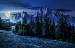 forest in mountains with rocky peaks at night-161712 (M. Pellinni) Tags: ifttt dropbox forest hillside mountain tor night landscape summer rocky peaks spruce grassy full moon light gorgeous composite image strengths eternity concept lovely elevation midnight outside ridge rockypeak darknight mountainous peak nature tree dark hill mount star layer scenery fullmoon outdoor unreal cgi glow montage dreamy beautiful wonderful surrounding black navy environment
